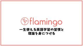 フラミンゴオンラインコーチングの口コミ・評判【英会話スクール】